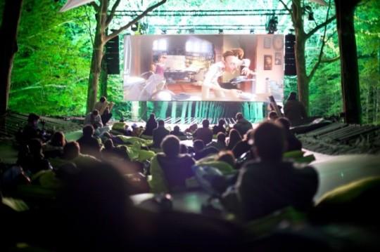 Cine en el bosque