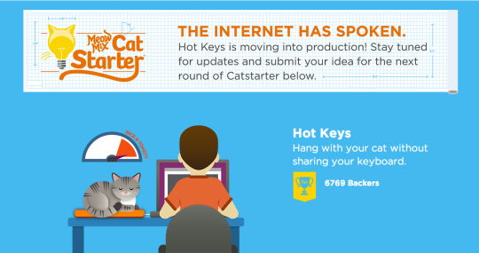 Cat kickstarter
