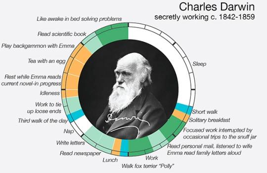 Darwin  routine