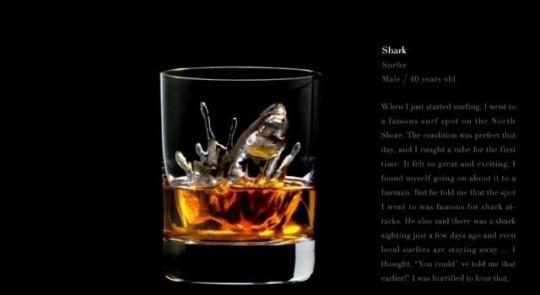 Ice cube shark