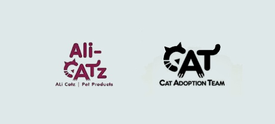 ali catz - cat adoption team