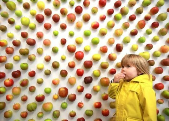 tienda apple real